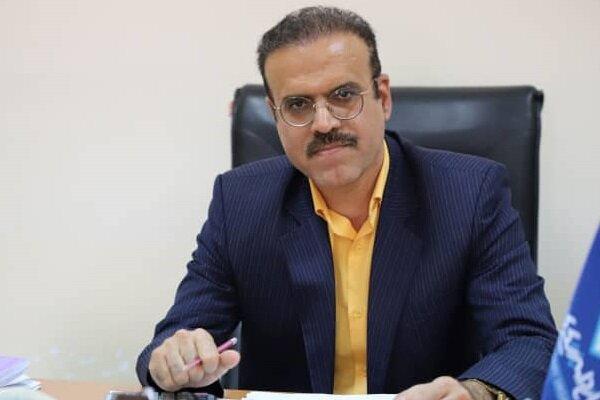 ۱۴ هزار تن میگوی پرورشی از بوشهر صادر شد/ انجام نظارت بهداشتی