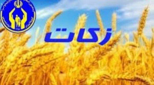 مردم استان بوشهر ۹۳ میلیارد ریال زکات پرداخت کردند