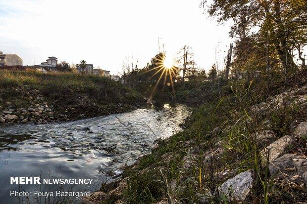 رودخانه گوهررود یکی از دو رود شهررشت است که از ۷۰۰ متری کوههای سراوان سرچشمه میگیرد و پس از ورود ابه جنوب شهر رشت و با پیوستن به دیگر رودخانه رشت یعنی زرجوب رودخانه پیربازار را تشکیل میدهد و به دریای کاسپین و تالاب انزلی میریزد.