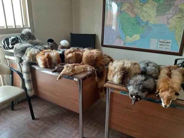 کشف و ضبط محصولات ساخته شده از پوست حیوانات وحشی در تهران
