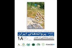«راهنمای میدانی پروانههای ایران» در موزه دارآباد رونمایی میشود
