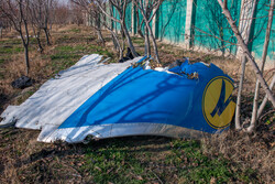 More details of Ukrainian plane's case released by Military Prosecutor