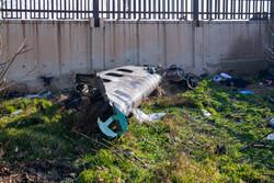 تہران میں یوکرائن کا بوئنگ طیارہ 737 گر کر تباہ ہوگیا