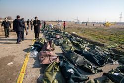 تشکیل پرونده خانواده شهدای سانحه سقوط هواپیمای اوکراینی در بنیاد شهید
