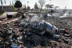 Ukrainian prosecutor general asks Iran to deliver crashed plane's black boxes: report