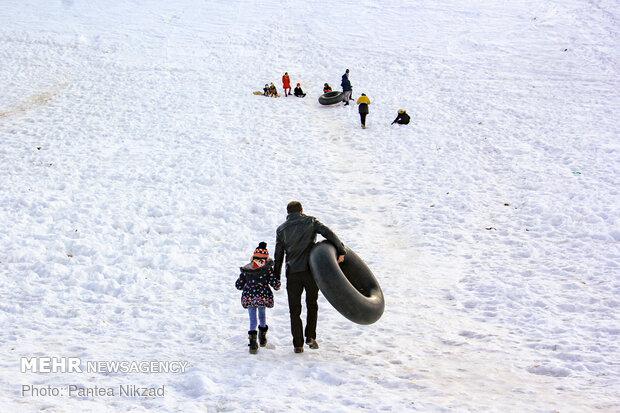 تفریحات برفی در بام ایران