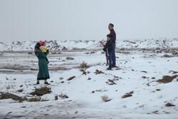 بارش نخستین برف زمستانی در بیرجند