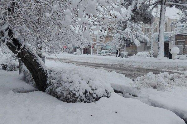 بارش سنگین برف درتایباد/تردد درجادهها بازنجیر چرخ امکانپذیر است