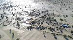 İran'da sel felaketi: 3 ölü