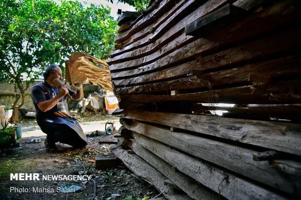 دستانی که به چوب زندگی بخشید