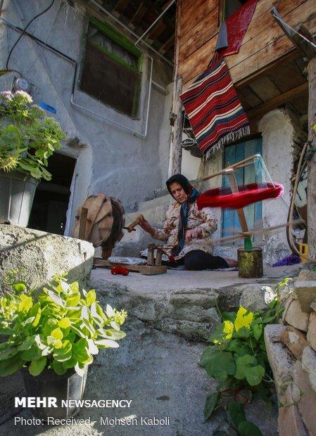 """حياكة السجاد اليدوي """"جاجيم"""" في قرية زيارت"""