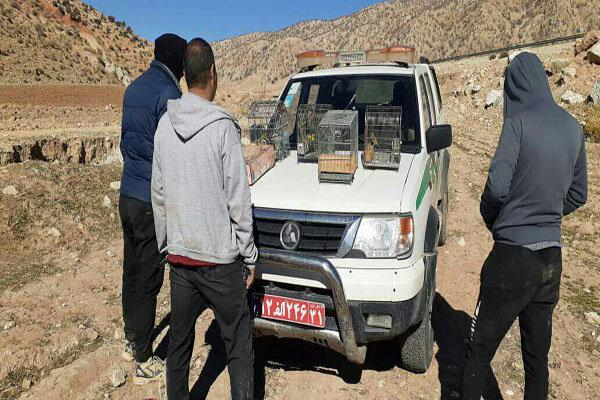 دستگیری ۹ متخلف زیست محیطی در پلدختر