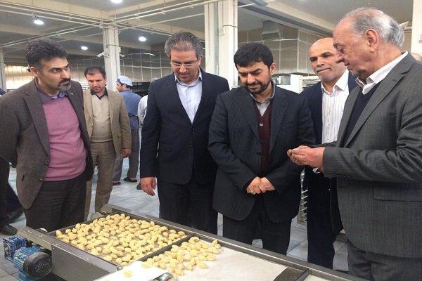 قائم مقام وزیر صمت از ۳ واحد تولیدی در یزد بازدید کرد