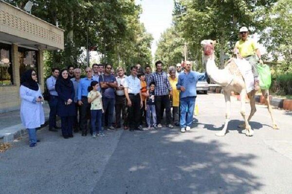 Deve ile dünya turuna çıkan İranlı gezgin Azerbaycan'da