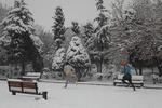 تہران میں شدید برف باری