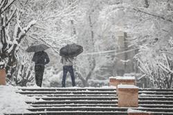 هشدار جدی برای سرمازدگی شدید/ کاهش قابل توجه دما در استان سمنان
