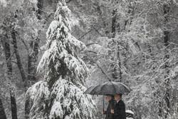 مدیران در خصوص ورود سامانه برف و سرما به همدان هوشیار باشند