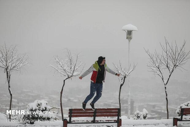 بارش برف زمستانی در تهران