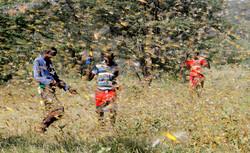 هجوم الجراد في شرق أفريقيا/صور
