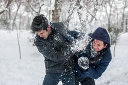 """تقاذف الثلج في """"تبريز""""/صور"""