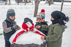 Snowfall brings happiness to families in NW Iran