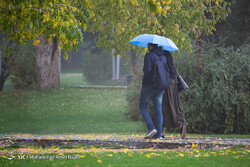 Precipitation increases by 44% within a month