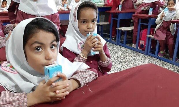 توزیع شیر رایگان بین دانش آموزان ایلامی به زودی آغاز می شود