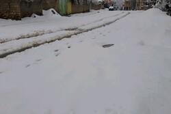 خیایان های فرعی شهر یاسوج به علت بارش برف مسدود شد