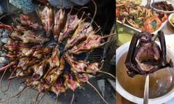چین میں کورونا وائرس چمگادڑ کا سوپ اور زندہ چوہے کھانے سے پھیلا