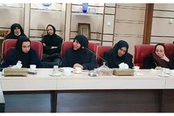بانوان قادرند در توسعه استان قزوین نقش بیشتری بر عهده بگیرند