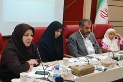 ۴۵ درصد کارمندان دولت در استان قزوین را زنان تشکیل می دهند