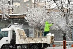 کربلائے معلی میں پہلی بار برف باری ہوئی