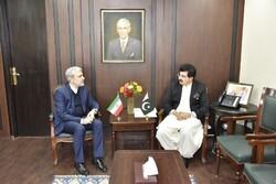 Pakistan Senate chairman hails Iran's regional stances