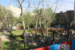 تراژدی نابودی باغات کاشان همزمان با توسعه سیمانی ساخت و سازها