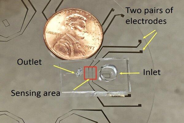 شناسایی سریع میکروبهای آبی با دستگاه قابل حمل محقق ایرانی