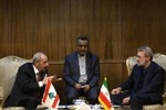 Iran, Lebanon parl. speakers stress futility of Trump's plan for Palestine
