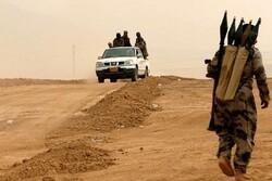 عراق کے صوبہ دیالی میں 3 داعش دہشت گرد ہلاک