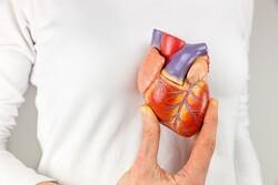 قلب رباتیک با اجزای قلب واقعی تولید شد