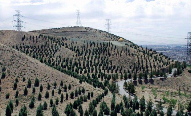 احداث مسیر کوهستانی دیارگاه تیناز