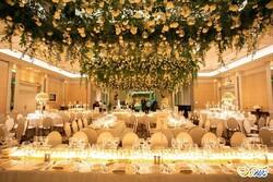 لغو مراسم عروسی در البرز/ تالارداران مبالغ ودیعه را برگردانند