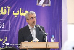227 development projects to come on stream by yearend: Energy min.