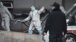WHO sends novel coronavirus test kits to Iran