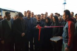 یک طرح دامداری در شهرستان بویین زهرا افتتاح شد