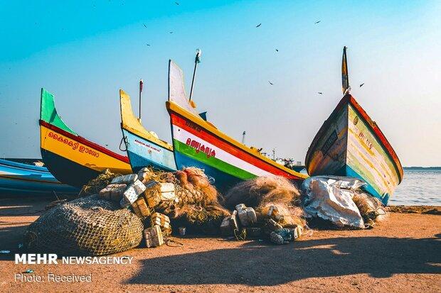 الصورالفائزة في مسابقة تصوير المناظر الطبيعية لعام 2019