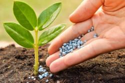 بررسی یک تجربه موفق بینالمللی در کشاورزی/رهیافتهای سنتی دیگر پاسخگو نیست