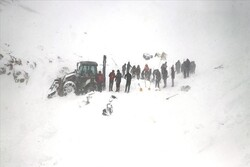23 killed in avalanche in eastern Turkey