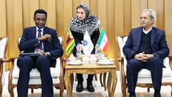 Head of Iran Chamber of Commerce, Industries, Mines and Agriculture (ICCIMA) Gholam-Hossein Shafei (R) met with the Zimbabwean ambassador to Tehran Christopher Mapanga (L) in Tehran on Tuesday.