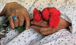 تشنه محبت؛ چشم انتظار دیدار میوه باغ زندگی