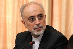Iran not to hesitate to take any measures to protect its security: AEOI chief