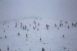 بجنورد میں برف کے قدرتی مناظر